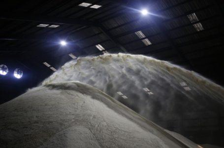 عملاق السكر في دبي يمضي قدمًا لبناء مصنع بنجر في إسبانيا
